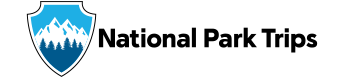 NPT_bugWordmark_horizontal_350